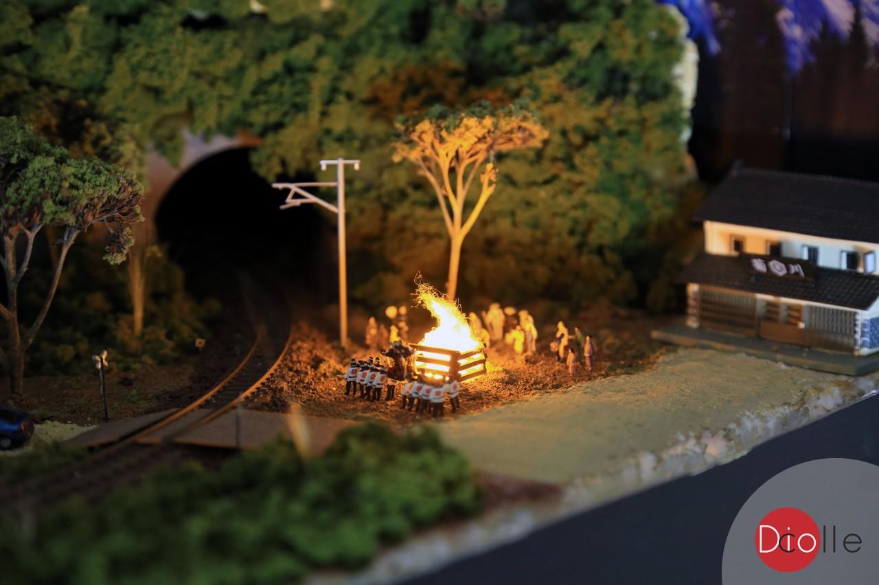 diocolle diy campfire 04
